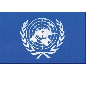 Flag United Nations 3' X 5'