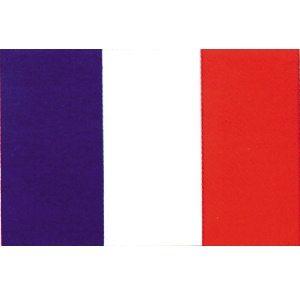 Flag France 3' X 5'