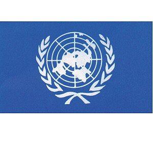 Flag United Nations 3' X 5'