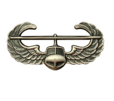 Army Badge Air Assault Wings